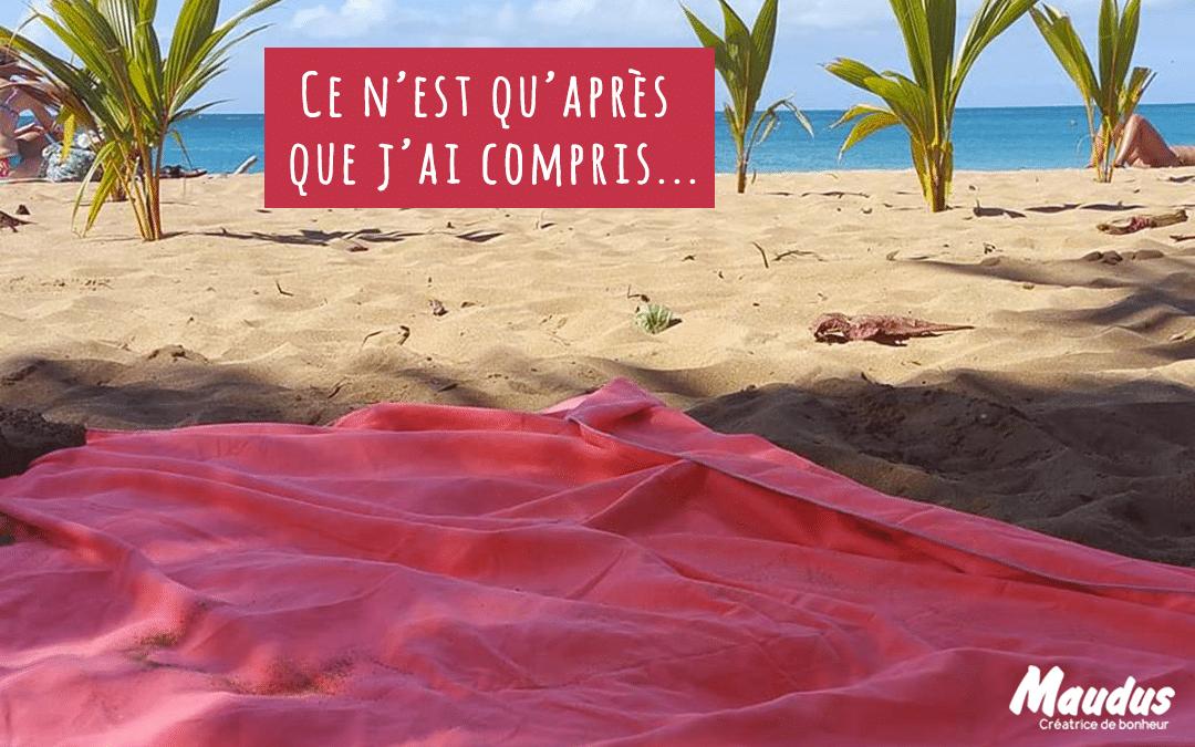 Dernière chronique #Guadeloupe: Ce n'est qu'après que j'ai compris…